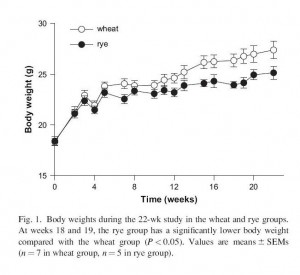 Wheat-vs-rye-in-mice-300x275